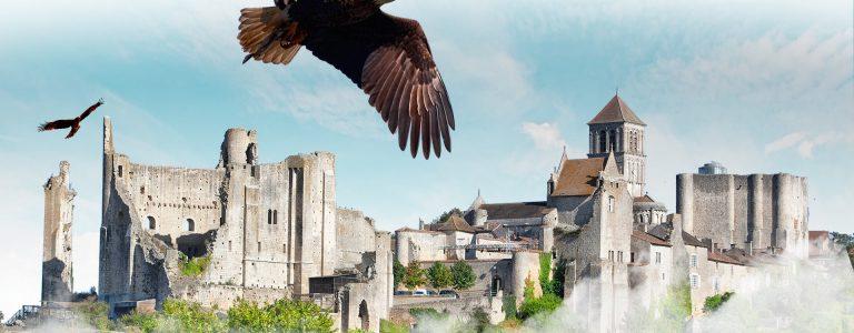 office-tourisme-poitiers-visitpoitiers-chauvigny-geants-du-ciel-aigles-1